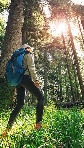 Photo of a person in context: a hiker walking through a forest